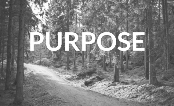 Purpose - BW