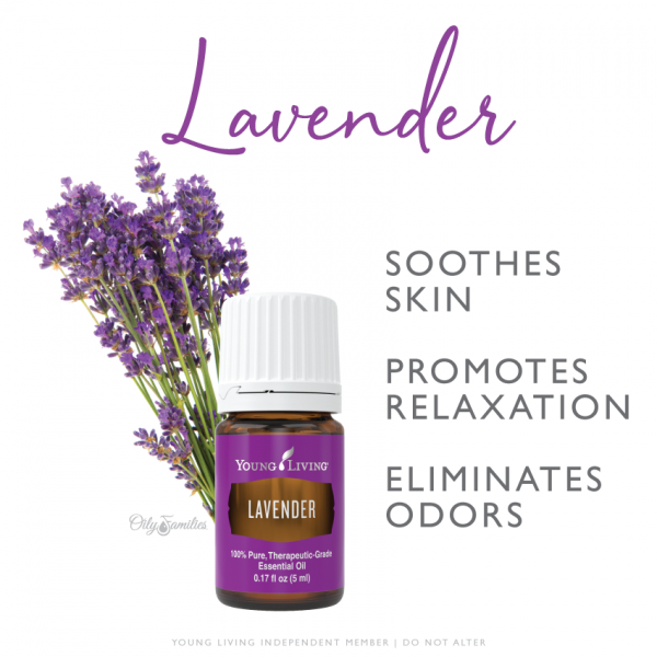 Lavender Young Living Essential Oils Better Sleep Bug Bites NonToxic