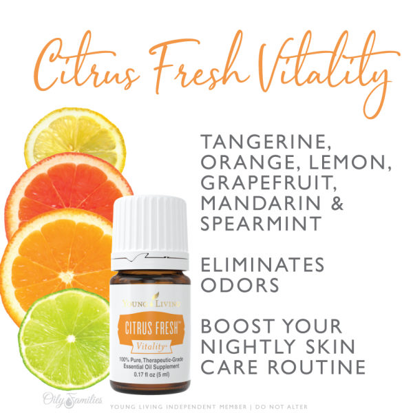 Citrus Fresh Candle Replacement Young Living Essential Oils